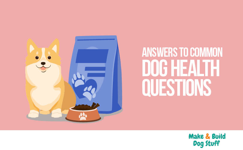 Answers to common dog health questions