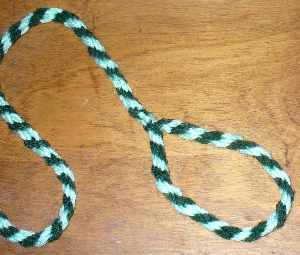 Small homemade dog leash made out of braided yarns.