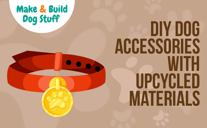 Make dog accessories with upcycle materials.