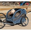 dog riding in bicycle trailer