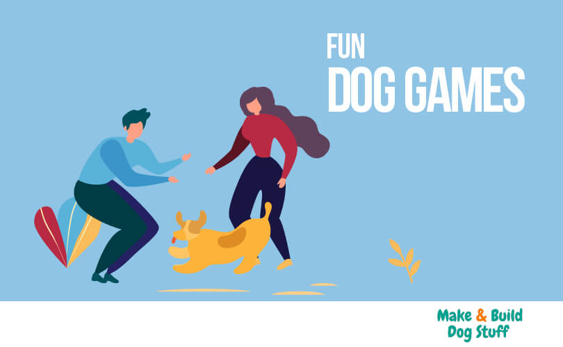 A collection of fun dog games