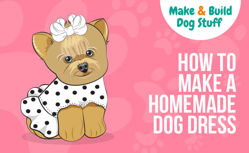Learn how to make a homemade dog dress