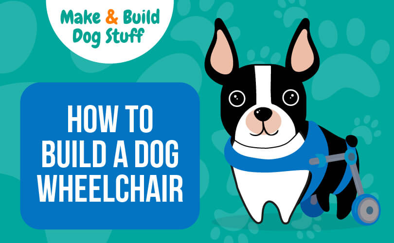 An animated picture of a small dog in a wheelchair. Text reads how to build a dog wheelchair.