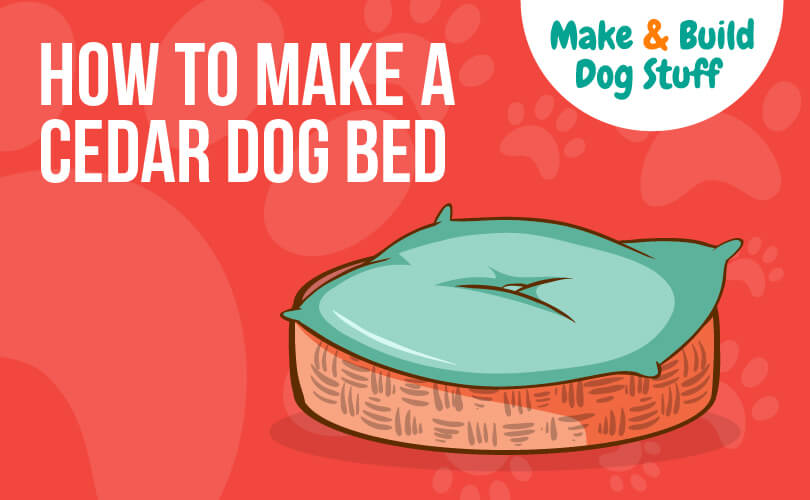 An animated picture of a dog bed. The text on the image reads how to make a cedar dog bed. The picture has the site title on it.