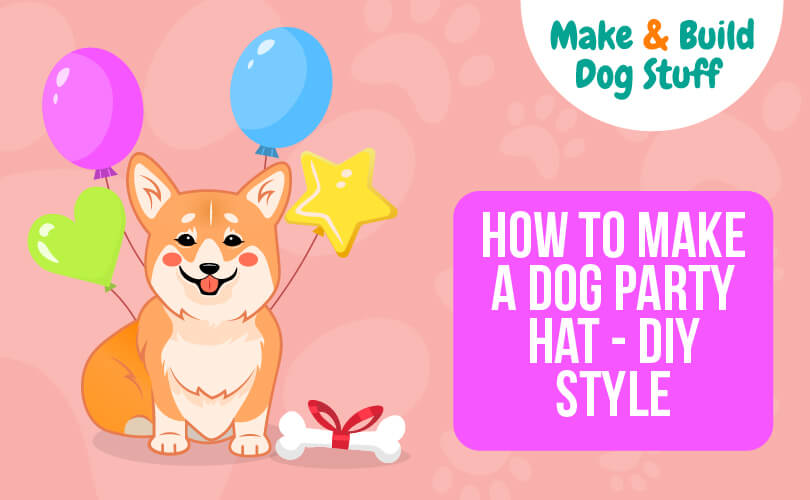 An animated picture of a dog with 4 different colored balloons and a dog bone wrapped in a red bow. Text reads how to make a dog party hat - diy style.