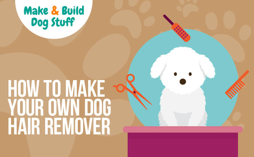 An animated picture of a dog on a box with hair grooming tools bordering her. Text reads how to make your own dog hair remover.