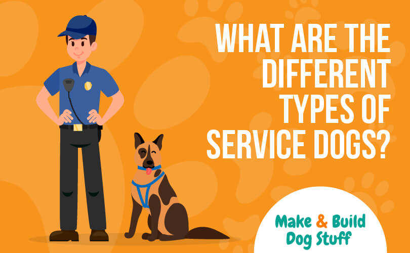 An animated picture of a police with a dog sitting at his feet. The text reads what are the different types of service dogs? The website name is on the image.