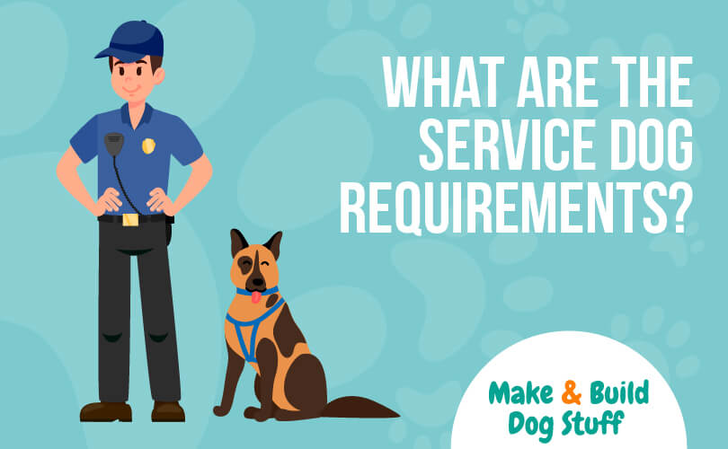 An animated image of a police man with a police dog sitting next to him. Text reads what are the service dog requirements?