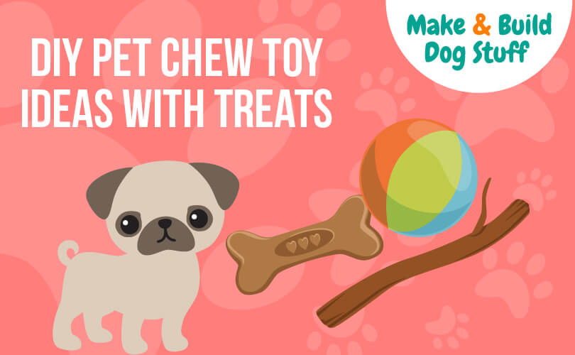 An animated picture of a pug a dog bone, a tennis ball, and a stick with a pink background. The text reads DIY pet chew toy ideas with treats.