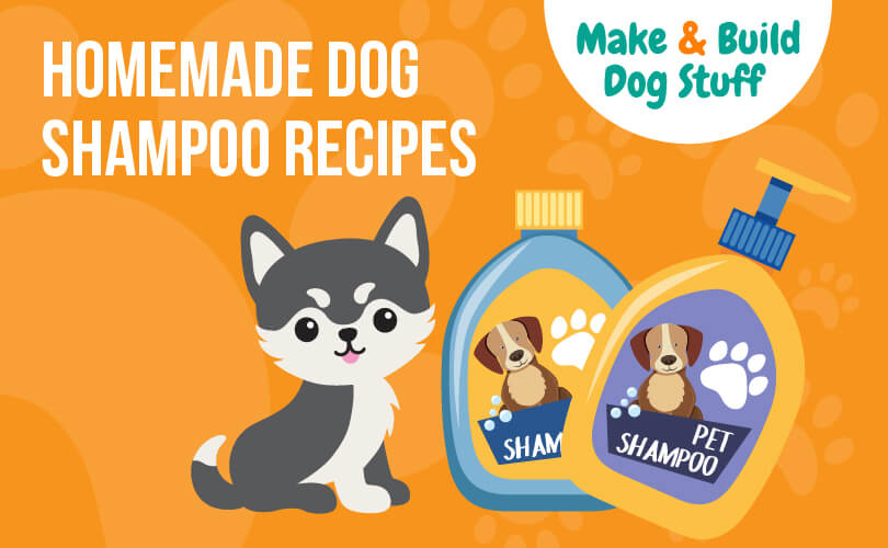 An animated picture of a small dog with two bottles of dog shampoo next to him. The background is orange. The text reads homemade dog shampoo recipes.