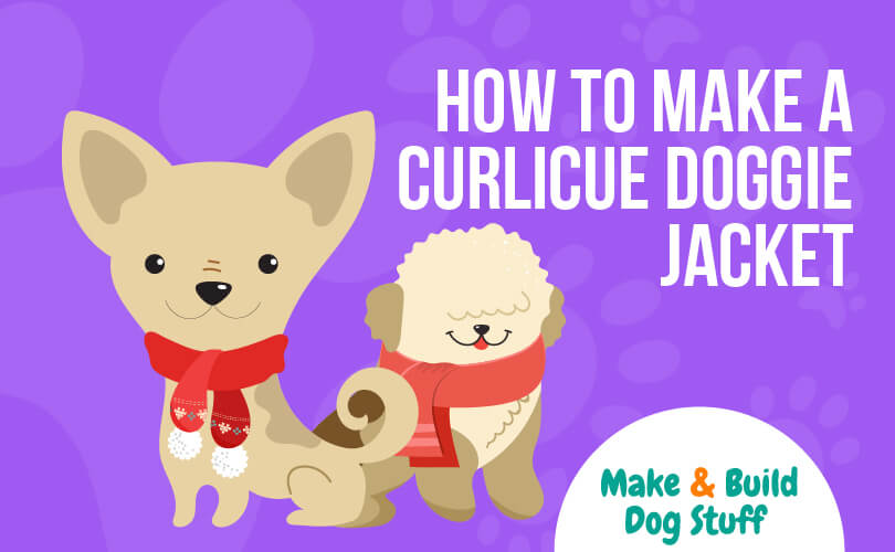 An image of two small dogs wearing red scarves. The text reads how to make a curlicue doggie jacket.