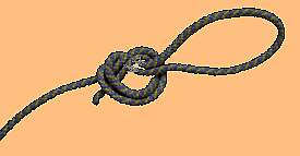 a rope leash