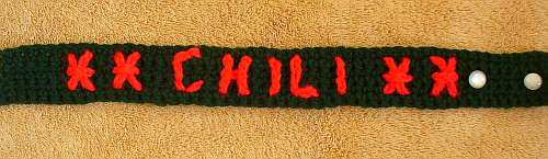 Crocheted dog collar made for our friend's dog, Chili.