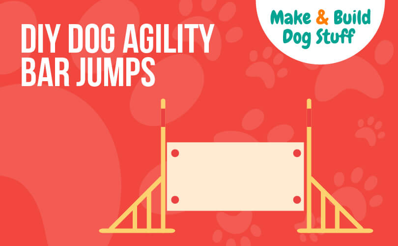 An animated picture of dog agility bar jumps