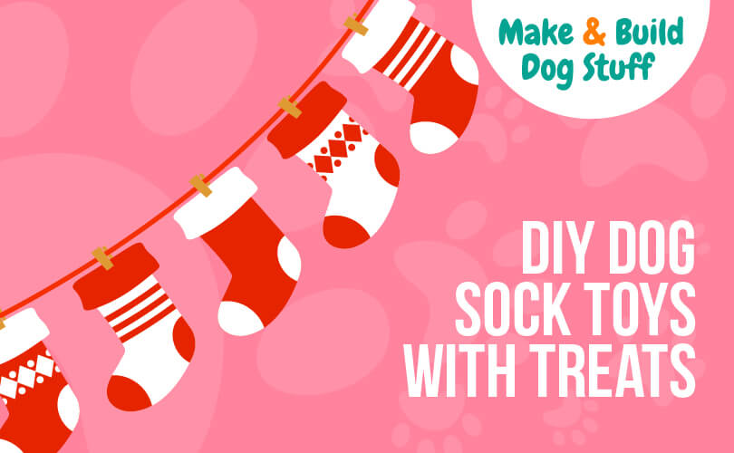 Learn how to make dog sock toys with treats