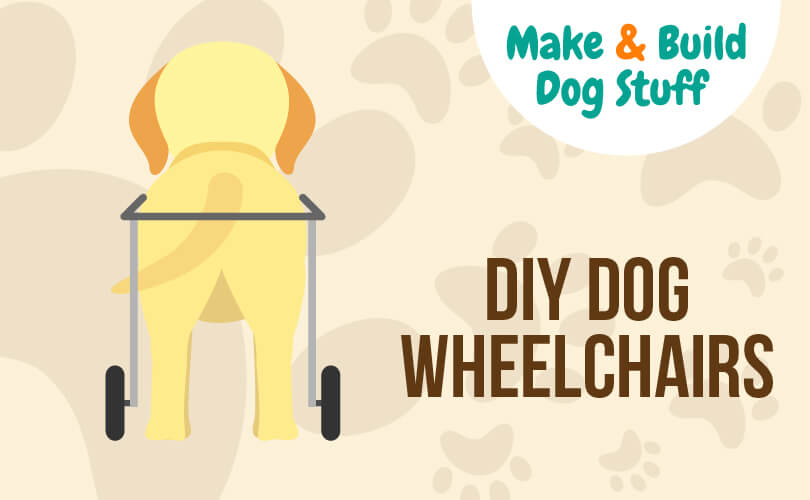 An animated picture looking at the back of a dog with the dog being in a wheelchair. Text reads DIY dog wheelchairs.