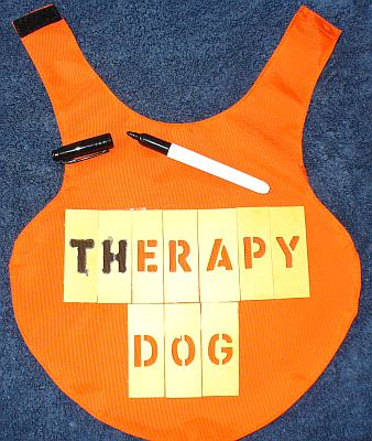 A picture showing the letters being added to the dog therapy vest.