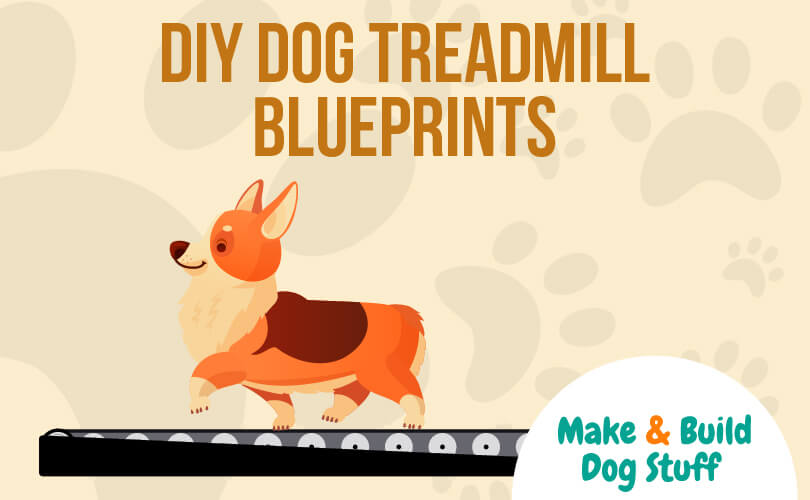 An animated picture of a dog on a treadmill