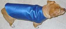 A dog wearing a blue coat