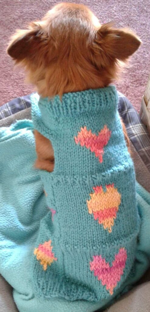 Hearts and diamonds Valentine dog sweater.