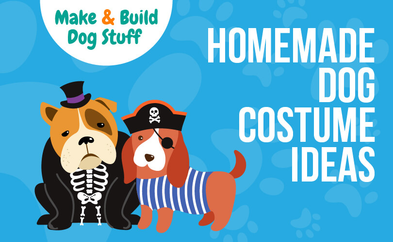 An animated picture of two small dogs wearing costumes. One wearing a skeleton costume the other dressed in pirates clothing. Text reads homemade dog costume ideas.