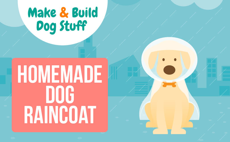 An animated picture of a white dog wearing a raincoat. Text reads homemade dog raincoat.