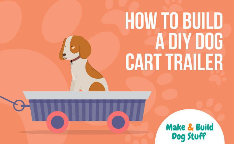 An animated picture of a white and brown dog sitting inside a pull cart. The text reads how to build a DIY dog cart trailer.