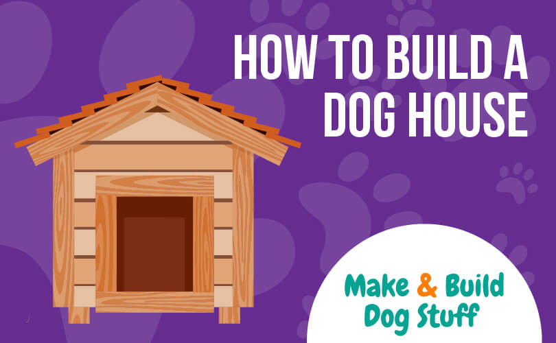 An animated picture of a dog house with a purple background. Text reads how to build a dog house.