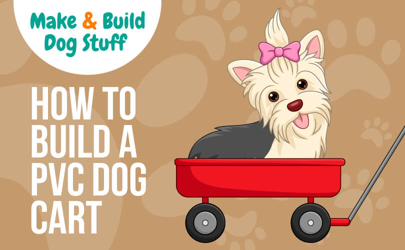 An animated picture of a small dog with a pink bow in-between her ears, riding in a red wagon. Text reads how to build a PVC dog cart.