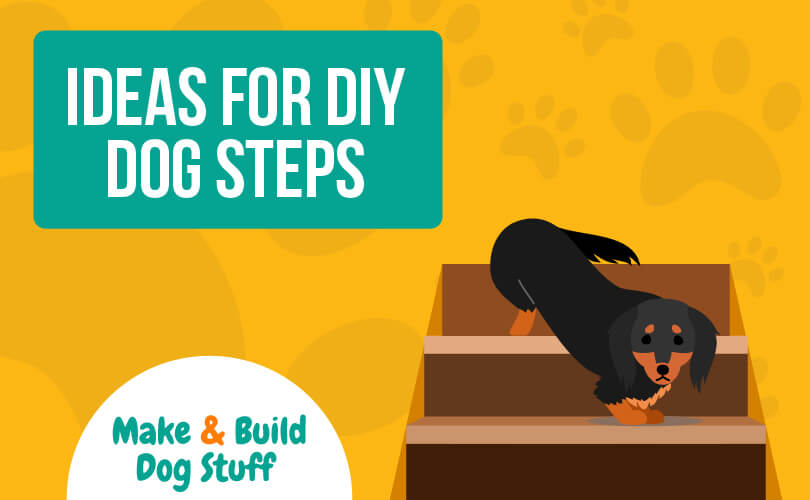 An animated picture of a black and white dog walking down steps. Text reads ideas for DIY dog steps.