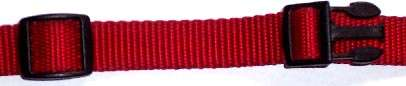 Red nylon dog collar.